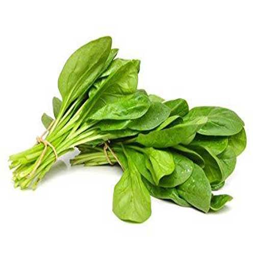 Vegetable Seeds : Spinach