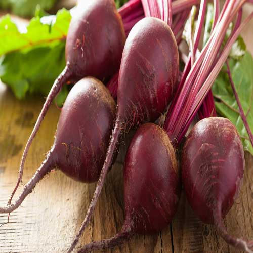 Vegetable Seeds : Beet Root