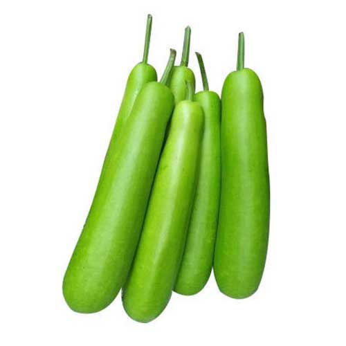 Vegetable Seeds : bottle gourd