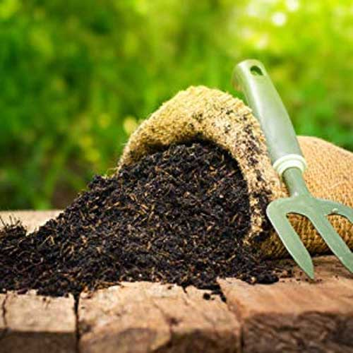 Soil & Fertilizers : All For Gardens